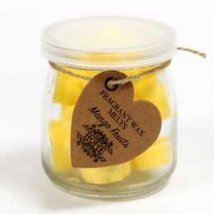 Mango Fruits Soywax Melts