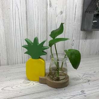 Pineapple Hydroponic